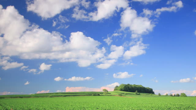 Green Hill and Blue Sky: HQ 1080P 4:4:4 RGB