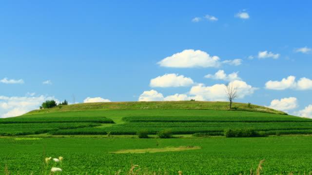vídeos de stock e filmes b-roll de colina verde e céu azul - pasture