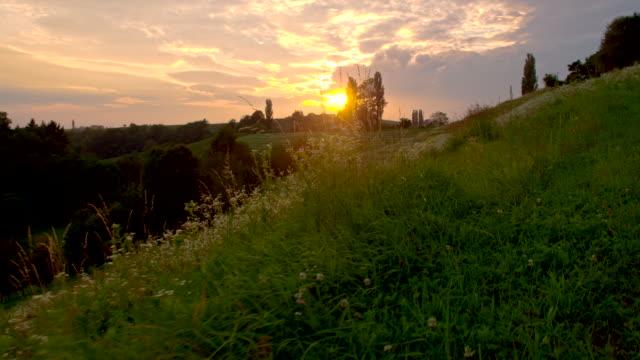WS LA colina verde no Anoitecer