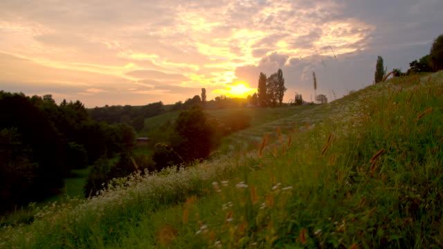 WS LA colina verde no pôr do sol