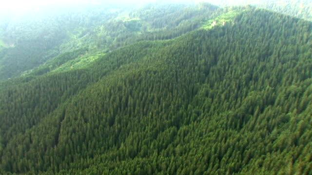 vídeos y material grabado en eventos de stock de hd: verdes colinas - perspectiva desde un helicóptero