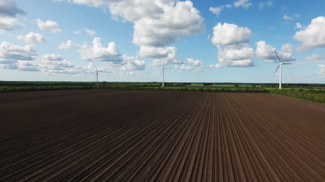 Green hope: Newly prepared field with wind turbines