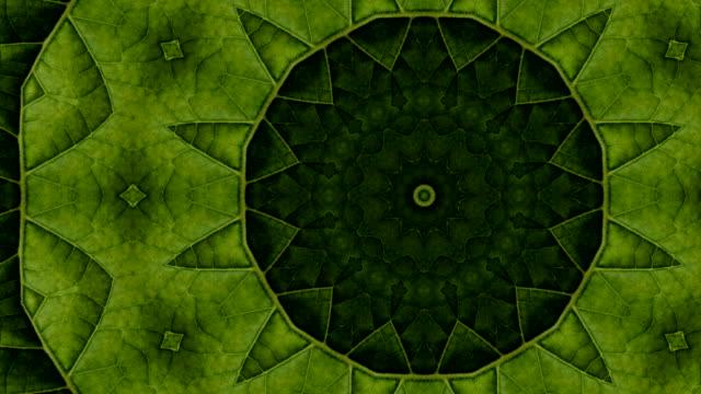 グリーンの万華鏡 - 美術工芸品点の映像素材/bロール