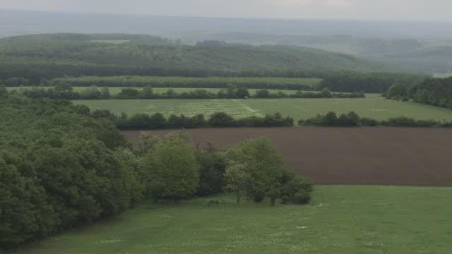green landscape brown field trees jungle hills in fog bg - kwazulu natal stock videos & royalty-free footage