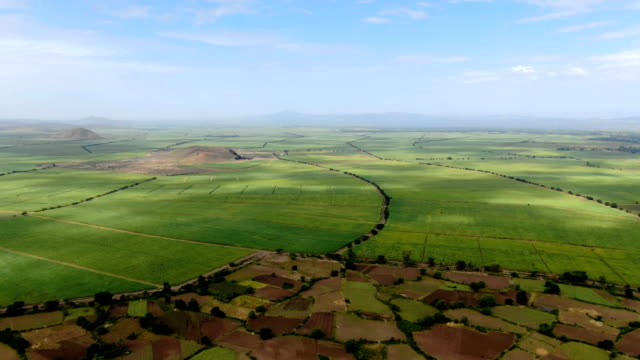 green lush landscape with agricultural fields in the rift valley of ethiopia, africa - horn of africa stock videos & royalty-free footage