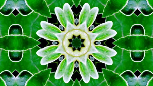 mandala motion Grafik-loop Green