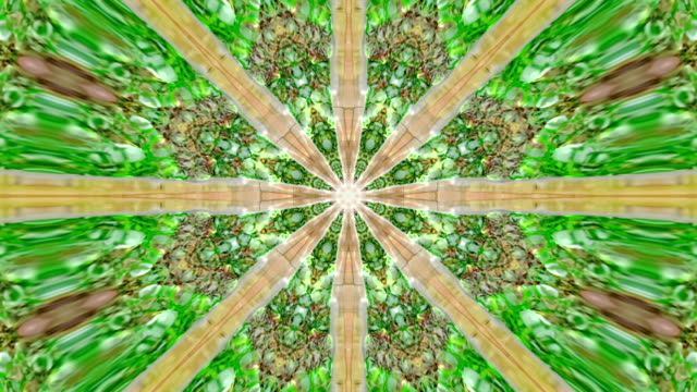 Green mandala motion graphic loop