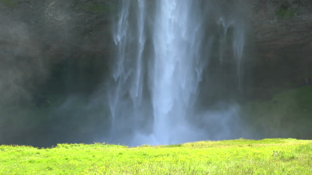 Green meadow in front of Seljalandsfoss waterfall in Iceland during a sunny bright day