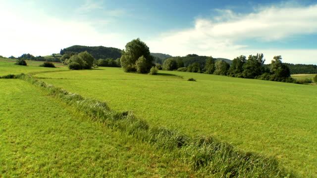 空から見た緑の牧草地