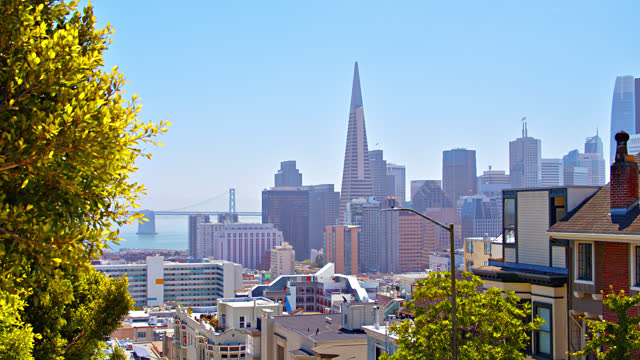 green nature und san francisco business district. - nordkalifornien stock-videos und b-roll-filmmaterial