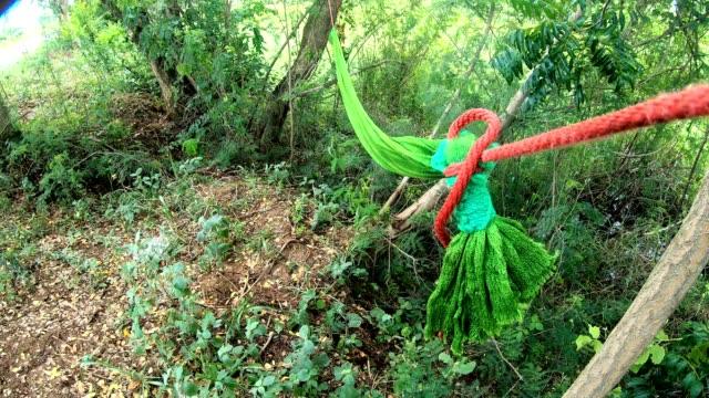vídeos de stock, filmes e b-roll de redes de rede verde foram amarrados e deixados no campo. - árvore tropical