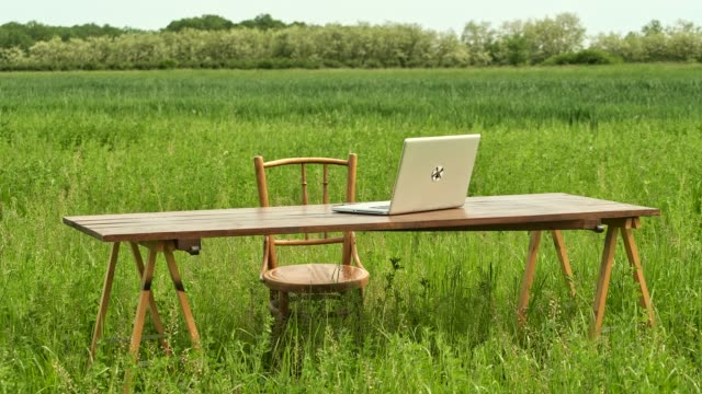 green office. business concept shot of an office desk with laptop in sunny meadow. - studio shot video stock e b–roll
