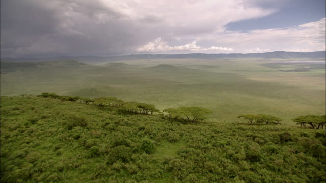 green paradies ngorongoro (tansania) - tanzania stock videos & royalty-free footage