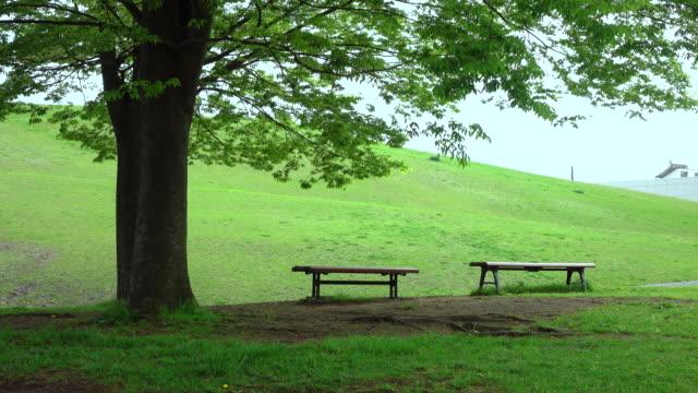 Green park -4K-