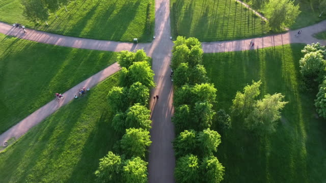 green park in the center of the city - green colour stock videos & royalty-free footage