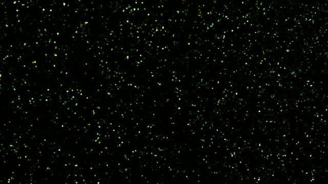grüne partikel-hintergrund. glitzer-serie verschiedener bewegungen der teilchen. version 1 - berühmte persönlichkeit stock-videos und b-roll-filmmaterial