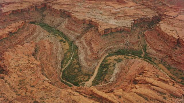 グランドキャニオンのサウスリムにあるコロラド川の空中緑の道 - グランドキャニオン点の映像素材/bロール