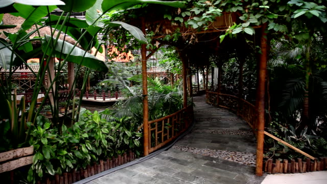 green plants in the greenhouse ecological. - pavilion stock videos & royalty-free footage