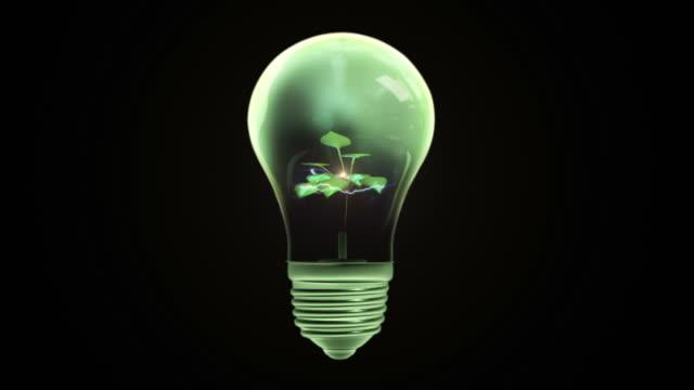 Verde energia lâmpada (preto