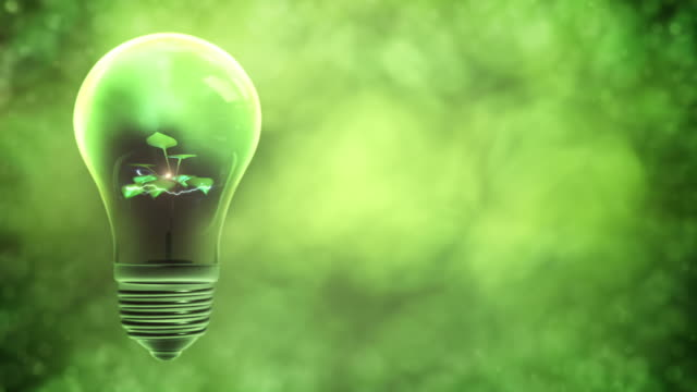 green power light bulb (left placed) - energy efficient lightbulb stock videos and b-roll footage