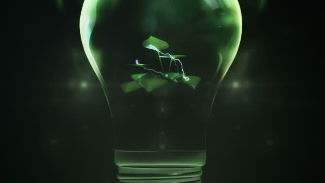 green power (dark version) - compact fluorescent light bulb stock videos & royalty-free footage