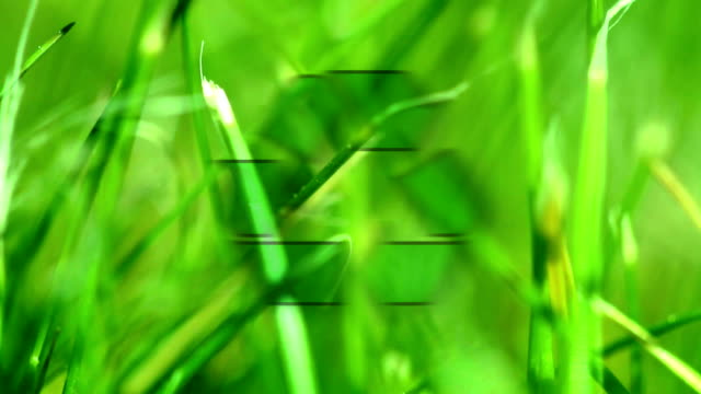 green recycling. hd - societal symbol stock videos & royalty-free footage