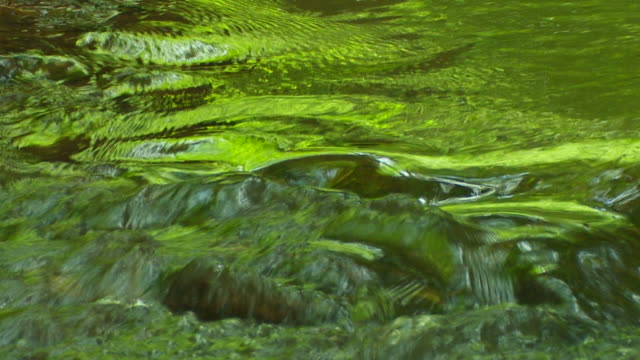 Green reflecting water (loopable)