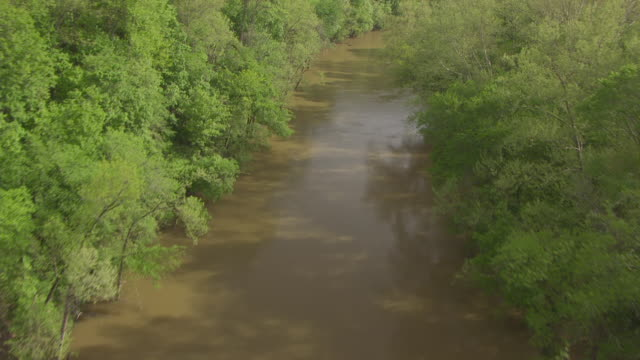 ms aerial ts green river path / kentucky, united states - river green stock videos & royalty-free footage
