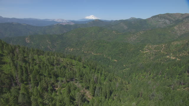 ws aerial pov green rolling hills and mount shasta in background at california - cascade range stock videos & royalty-free footage