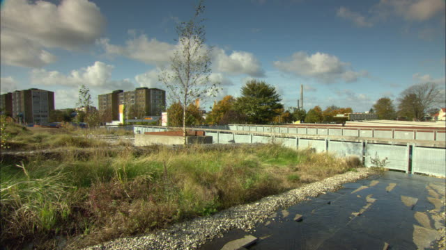 ws green roof featuring garden with small trees and grass / malmo, sweden - malmo stock videos and b-roll footage