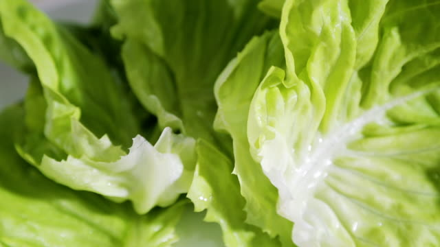green salad close-up - salad bowl stock videos & royalty-free footage