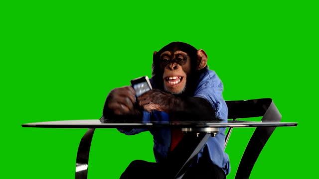 Groen scherm Monkey slimme telefoon