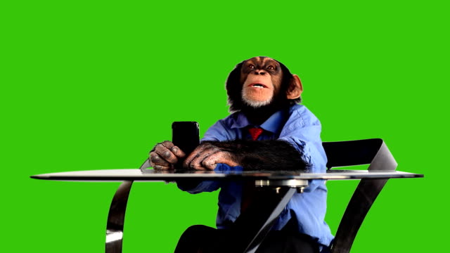 Green Screen Monkey Smart Phone