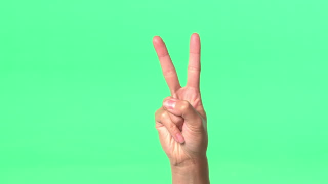 Green Screen - Woman's right hand counting to five with fingers