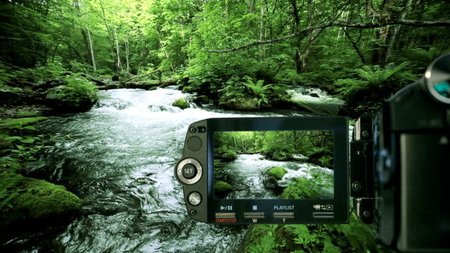 green stream recording with camcorder - plusphoto stock videos & royalty-free footage
