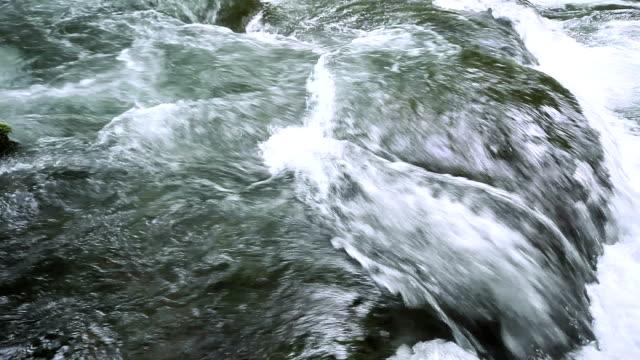 verde flusso. - plusphoto video stock e b–roll
