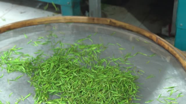 green tea in a flat round bamboo basket. - bamboo plant stock videos & royalty-free footage
