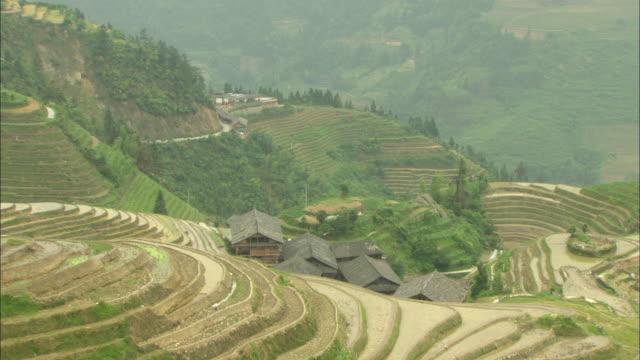 ws ha green terraced rice fields on hillside, guilin, guangxi zhuang autonomous region, china - guangxi zhuang autonomous region china stock videos & royalty-free footage