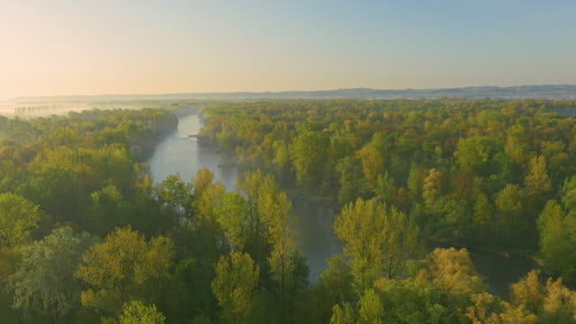 aerial green trees surrounding the river - prekmurje stock videos & royalty-free footage