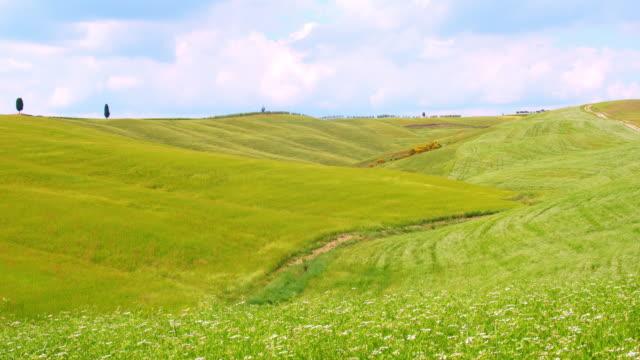 slo mo グリーントスカーナのフィールド - 草地点の映像素材/bロール