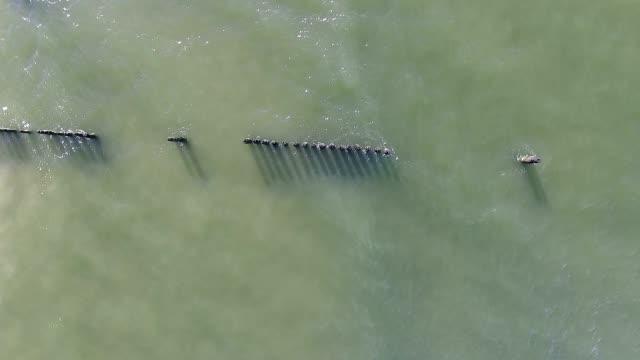 vídeos y material grabado en eventos de stock de uchrine verde mar con rompeolas - mancha solar