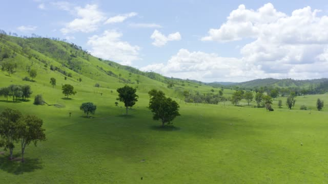 green valley - beauty in nature stock videos & royalty-free footage