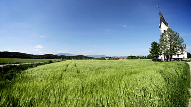 green wheat field in front of a small church - mgost stock videos and b-roll footage