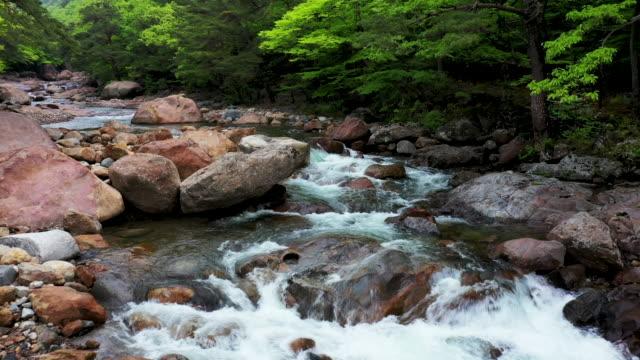 greenery valley near daewonsa temple / sancheong-gun, gyeongsangnam-do, south korea - 砂利点の映像素材/bロール