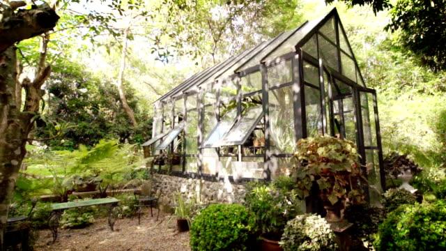 gewächshaus in einem garten mit vielen pflanzen im sommer. - gartengerät stock-videos und b-roll-filmmaterial