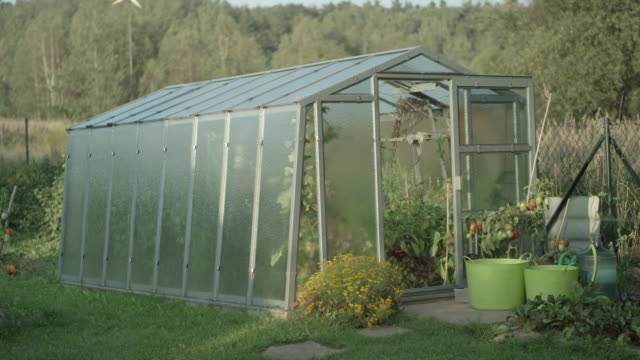 Greenhouse in the garden