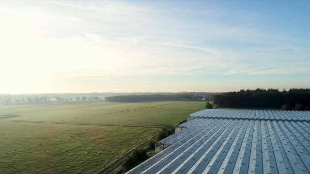 greenhouse - gewächshäuser stock-videos und b-roll-filmmaterial