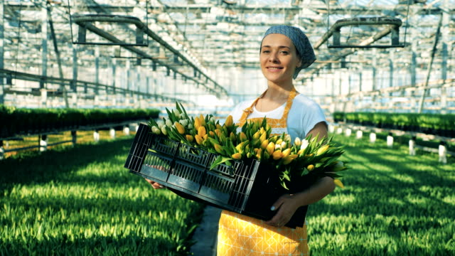 A greenhouse worker holds basket of tulips and smiles at a camera.