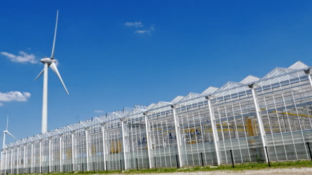 greenhouses and renewable energy. - efficiency stock videos & royalty-free footage