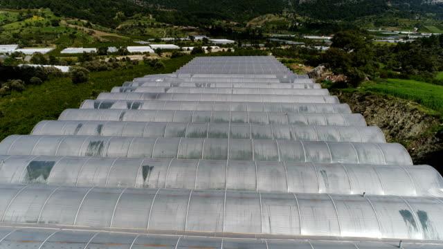 vidéos et rushes de serres dans la ferme drone shots-antalya/turquie - tomate